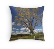 by the wayside Throw Pillow