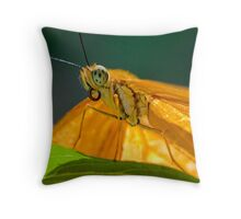 Julia Heliconian butterfly Throw Pillow