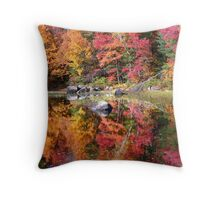 Autumn Snapshot ! Throw Pillow