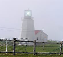 Lighthouse, Cape St. Mary, Newfoundland by Betty Mackey