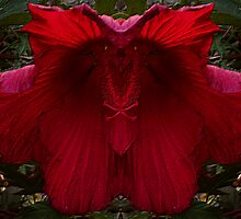 Red Flower by Tammy Soulliere