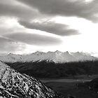 Mount Aspring, South New Zealand by Jarrod Lees