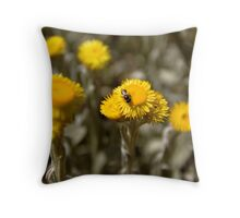 Australian Native Flowers With a Native Bee Throw Pillow
