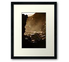 Webs v1 Framed Print