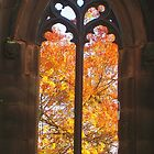 Autumn window by Debbie Vine