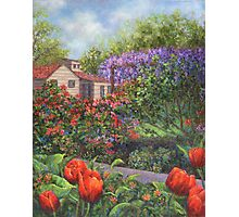 Garden with Tulips and Wisteria Photographic Print