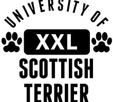 University Of Scottish Terrier by kwg2200