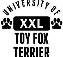 University Of Toy Fox Terrier by kwg2200