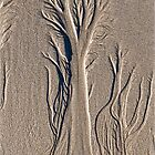 Sand Art by Susie Peek
