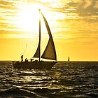 Sunset Cruise by Deborah Clearwater
