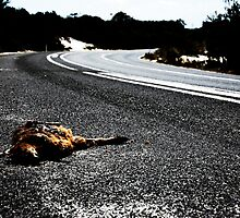 Road Kill. by Cameron Andersen
