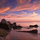 Twilight by Brian Puhl IPA