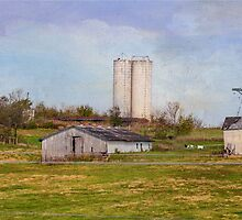 Country Farm by MaryTimman