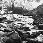 Judy Woods Stream 1 by IronHead42