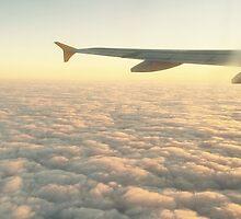 Plane by aodena