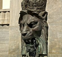 Lion Head Fountain by Irene Scales