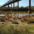 Argibuckle Bridge, Oodnadatta Track,Outback South Australia by Joe Mortelliti