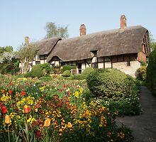 Ann Hathaway's Cottage Stratford Upon Avon by Tony Jones