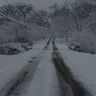 winter road by Emily Harney
