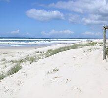 Gold Coast Beach Sunny Sunday in September   [,please read] by Virginia McGowan