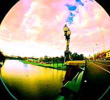 Warped - Yarra  River Princes Bridge by Elaine Batton
