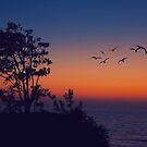 Sunset Over Del Mar by jjbentley