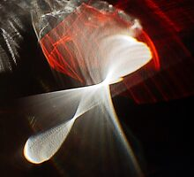 Lily of sunlight by elara