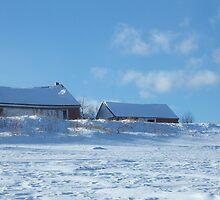 Farm Sheds by Gene Cyr