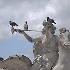 Perfect perches by Carol Dumousseau