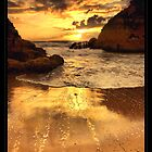 Calendar 2010 - Jose Ramos - Nature/Landscape Emotions II... by José Ramos