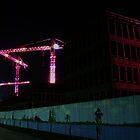 enlightened cranes..... by Frank Brüggemann