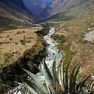 Mountain Scene Peru by Rebecca Smith