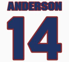 National football player David Anderson jersey 14 by imsport
