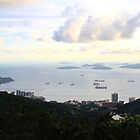 View South from the Peak - Hong Kong. by Tiffany Lenoir