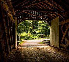 Cabin Run Bridge I by Debra Fedchin