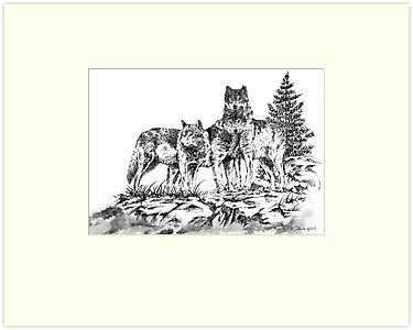 Wolf Ridge Timber Wolf Illustration by William Martin