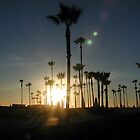 Venice Beach Palms by LizzyM