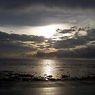 Beach Sunset by Cactus