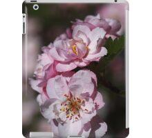 Crabapple Pink iPad Case/Skin