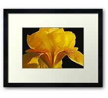 Inside an Iris Framed Print