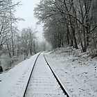 Snow Covered Railroad Tracks Along French Creek by Geno Rugh
