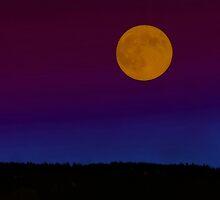 Fall Moon by Deri Dority