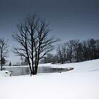 A Snow Day # 2 by Debra Fedchin