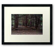 Dark Wood Framed Print
