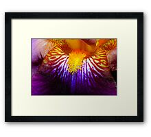 Inside An Iris 2 Framed Print