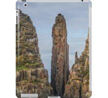 Tasman Island Totem Pole Tasmania iPad Case/Skin