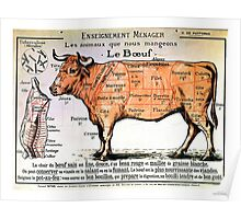 Beef - Diagram Depicting the Different Cuts of Meat Poster