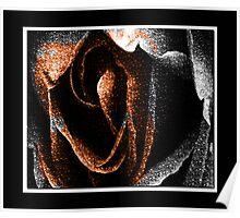 The odd Rose Poster