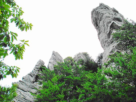 Hanging Rock  by Sarah Cook