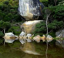 whale rock reflections by melanie tschiderer